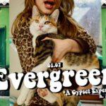 evergreen bunker