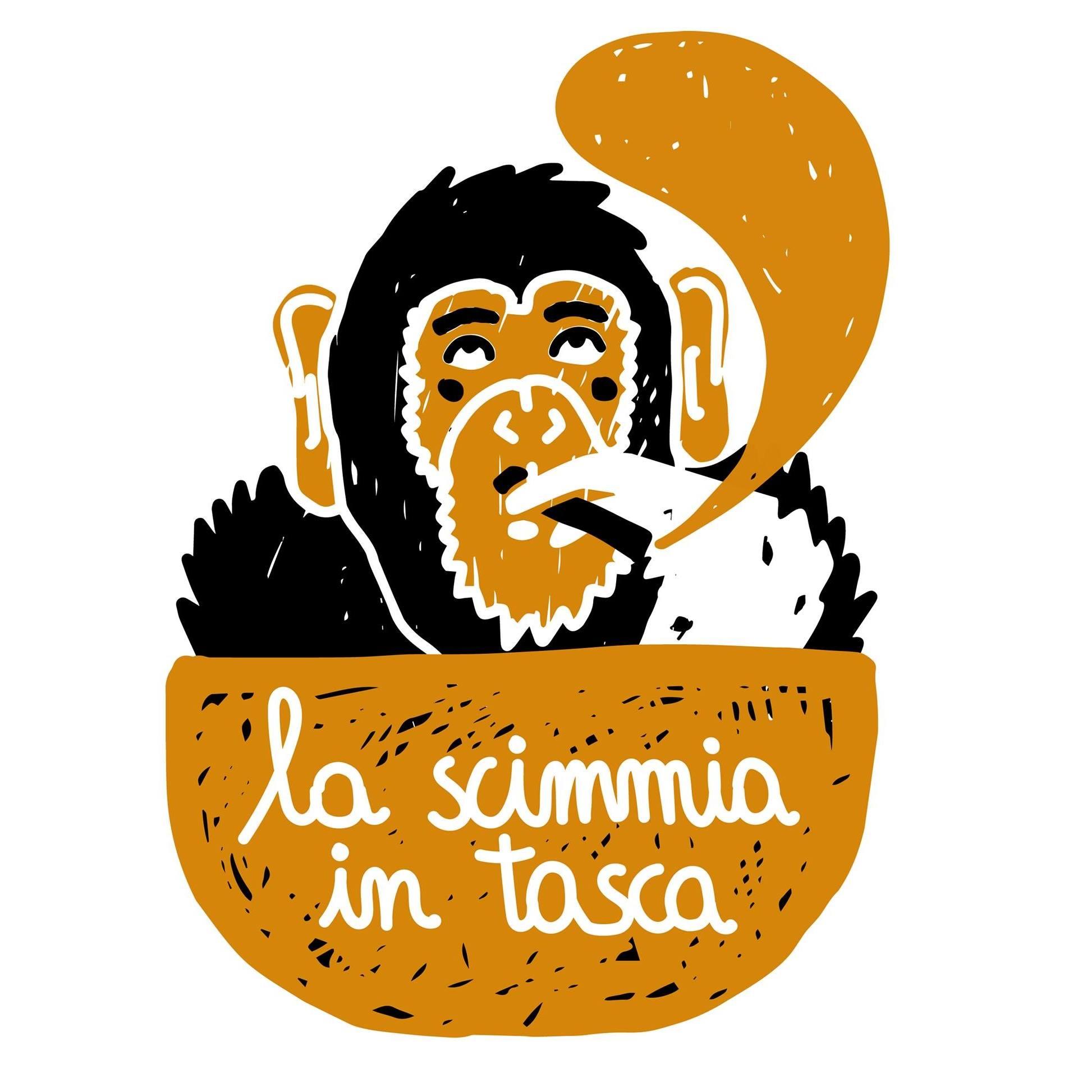 Aula studio alla Scimmia in tasca